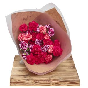 Classic Spray Carnations Tuti Fruiti Floral Gift Birthday Flowers Congratulations Thank You Bouquets