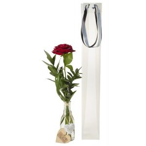 Single Red Rose In Glass Vase & Gift Bag - Flower Gift - Rose Vase Gift Set