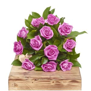 Pink Passion A Dozen Pink Roses Birthday Flowers Congratulations Thank You Bouquets